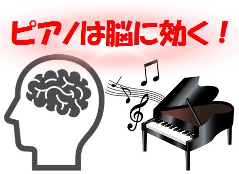 ぴあの脳とれ.jpg