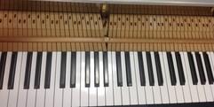 写真:ピアノ解体ショー・グランドピアノ編② 富士店