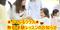 写真:【ぷっぷるクラス】無料体験レッスンのお知らせ!!|おとサロン富士