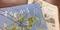 写真:[オーレ藤枝]すろーかる2月号に当教室情報が掲載されています!|藤枝店
