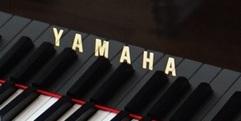 写真:藤枝、焼津、島田でピアノ買い取りなら、地元で安心のすみやグッディへ!|藤枝店