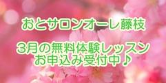 写真:[オーレ藤枝] 2021年3月の無料体験レッスン!|藤枝店