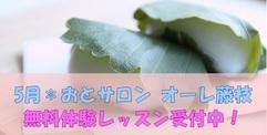 写真:[オーレ藤枝] 5月無料体験レッスン受付中!! | 藤枝店