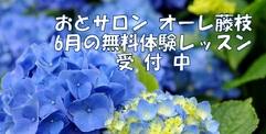 写真:[オーレ藤枝] 6月*無料体験レッスン受付中!   藤枝店