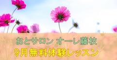 写真:[オーレ藤枝] OLE 9月無料体験レッスン受付中! | 藤枝店