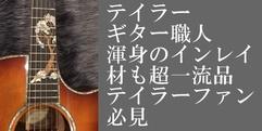 写真:エレアコギターTaylor /CST GAce-QT SPEC MFJ14 【アウトレット】 |本店
