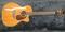 写真:TAKAMINE 静岡で中古ギターを買うなら楽器店の当店が安心!中古楽器入荷情報!!|本店