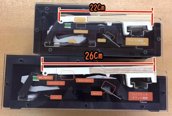鍵盤模型1.JPG