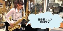 写真:管楽器フェア2日目が始まりました! 沼津店
