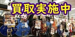 写真:中古楽器買い取ります 沼津店