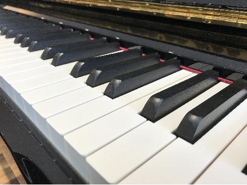 象牙長鍵盤.png