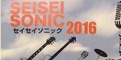 写真:今年も開催!SEISEISONIC2016|おとサロンSBS通り