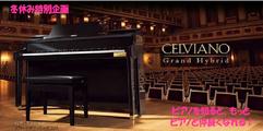 写真:「CASIO CELVIANO Grand Hybrid 」で学ぶ ピアノの歴史とピアノのしくみ|SBS通り店