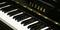 写真:SBS通り店で展示中!中古グランドピアノのご紹介|SBS通り店
