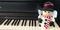 写真:クリスマスはピアノを弾こう!楽譜コーナーあります。|SBS通り店
