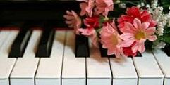 写真:ポピュラーピアノコンサート開催しました。 SBS通り店