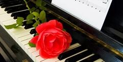 写真:中古ピアノをお探しなら|SBS店